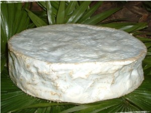 coulommiers brie